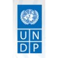 Logo UNDP-ACT